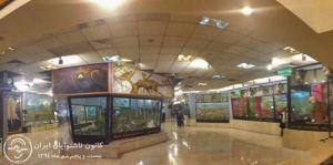 ادامه مطلب: اردوی موزه تنوع زیستی پردیسان  توسط کانون ناشنوایان ایران